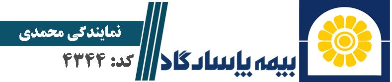 نماینده بیمه پاسارگاد| تهران کد : 4344| محمدی